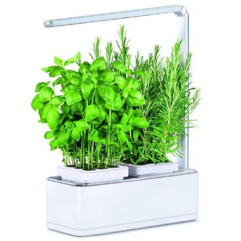 Jardin d'intérieur Viviana avec Kit de démarrage et puce NFC Kitchen Gardening