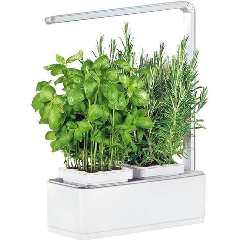 Jardinière avec lampe led intégrée Mini potager