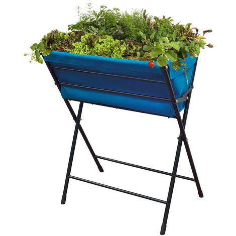 Jardinière VegTrug Poppy bleu