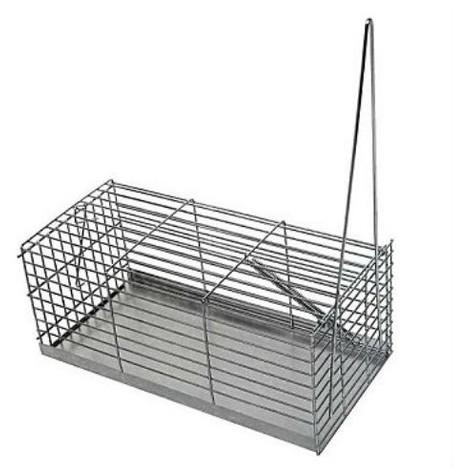 Jaula de Captura para Ratas y Ratones - 30 cm