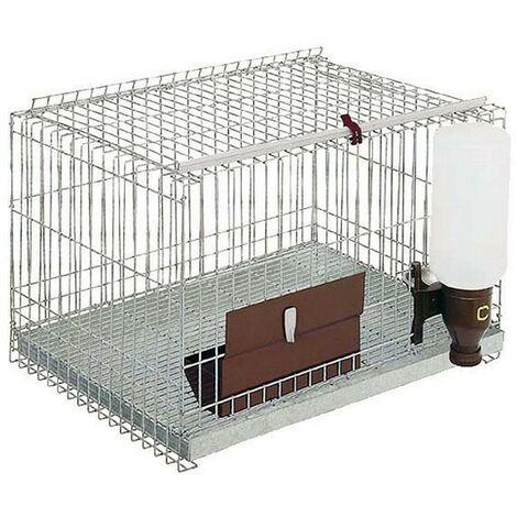 Jaula roedores 1 departamento