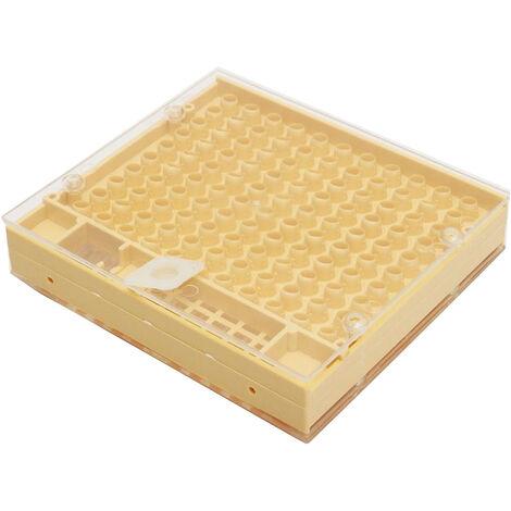 Jaulas de la abeja reina Cultivando caja reutilizable abeja reina Cria caja de la caja de la reina de apicultura Herramientas Equipo para Beekeepe