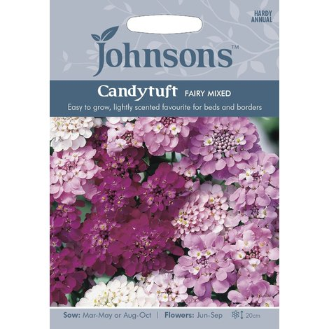 Johnsons Seeds - Pictorial Pack - Flower - Candytuft Fairy Mixed - 500 Seeds