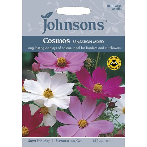 Johnsons Seeds - Pictorial Pack - Flower - Cosmos Sensation Mixed - 120 Seeds