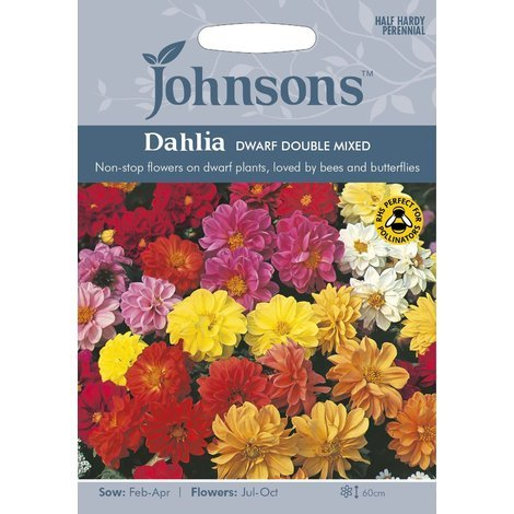 Johnsons Seeds - Pictorial Pack - Flower - Dahlia Dwarf Double Mixed - 50 Seeds
