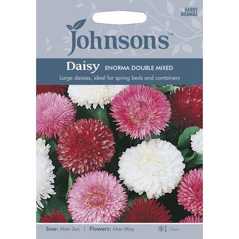 500 Seeds Johnsons Seeds Wallflower Scarlet Bedder Flower Pictorial Pack