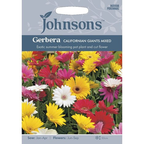 Johnsons Seeds - Pictorial Pack - Flower - Gerbera California Giants Mixed - 25 Seeds