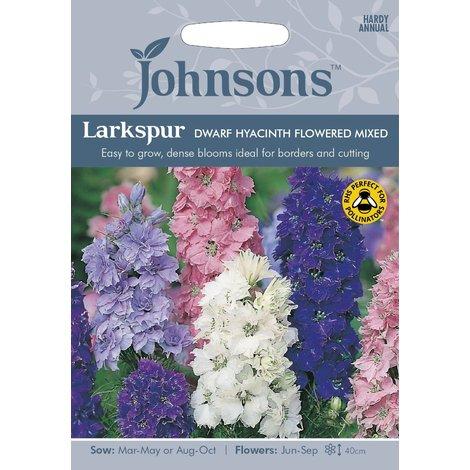 Johnsons Seeds - Pictorial Pack - Flower - Larkspur Dwarf Hyacinth Flowered Mixed - 300 Seeds