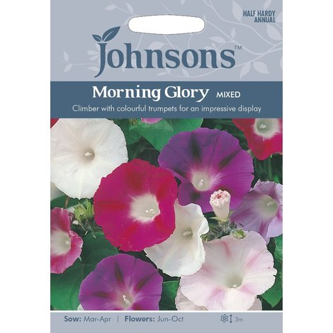 Johnsons Seeds - Pictorial Pack - Flower - Morning Glory Mixed - 50 Seeds