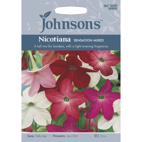 Johnsons Seeds - Pictorial Pack - Flower - Nicotiana Sensation Mixed - 2000 Seeds