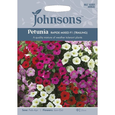 Johnsons Seeds - Pictorial Pack - Flower - Petunia Rapide Mixed F1 (Trailing) - 100 Seeds