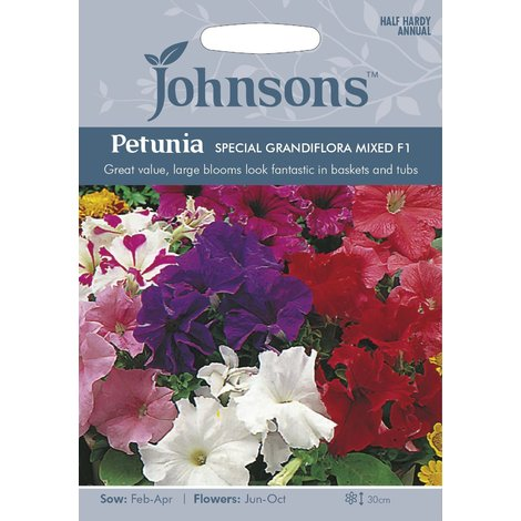 Johnsons Seeds - Pictorial Pack - Flower - Petunia Special Grandiflora Mixed F1 - 120 Seeds