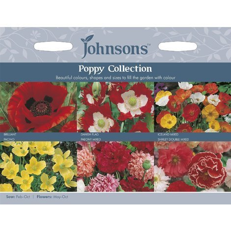 Johnsons Seeds - Pictorial Pack - Flower - Poppies Collection