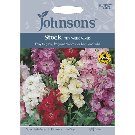 Stock Kings Seeds Pictorial Packet Flower Brompton Mixed