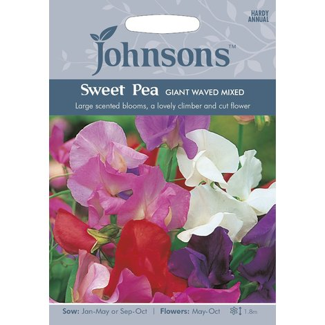Johnsons Seeds - Pictorial Pack - Flower - Sweet Pea Giant Waved Mixed - 40 Seeds