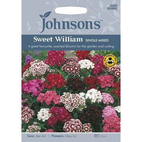 Johnsons Seeds - Pictorial Pack - Flower - Sweet William Single Mixed - 500 Seeds