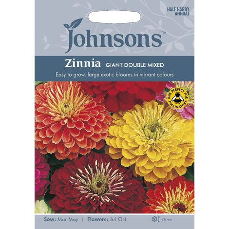Johnsons Seeds - Pictorial Pack - Flower - Zinnia Giant Double Mixed F1 - 100 Seeds