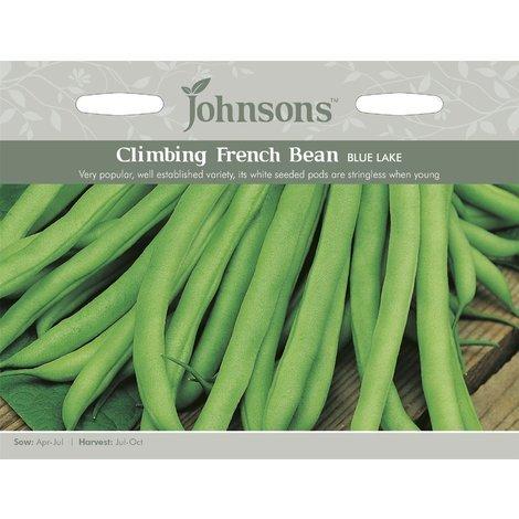 Pictorial Pack 100 Seeds Johnsons Seeds Vegetable Dwarf Bean Purple Teepee