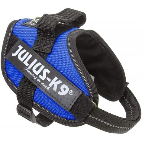 Julius idc mini-mini bleu