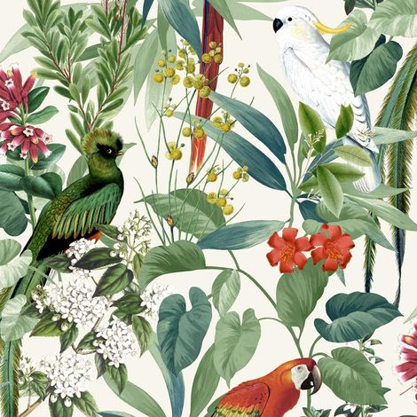 Jungle Birds Wallpaper Tropical Parrots Floral Tree Green White Paste Wall Vinyl
