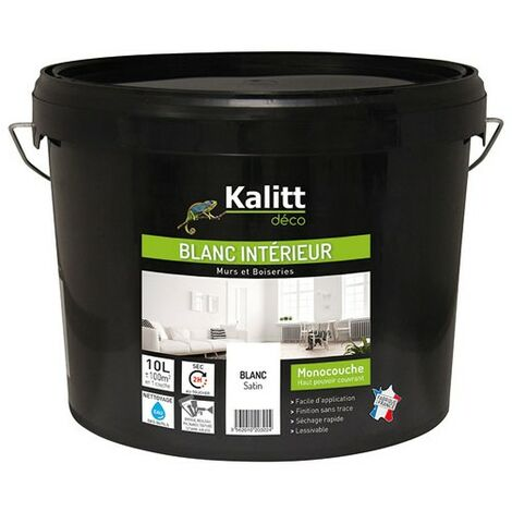 "main image of ""KALITTMUR/PLAF.MONO. ACRYL.SAT.BLC 10L"""