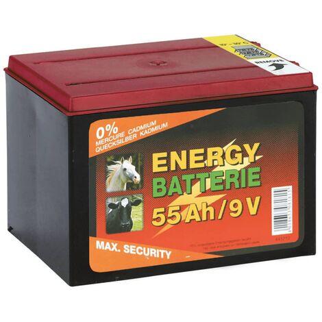 Kerbl Accumulatore batteria a secco zinco-carbone 9 V 55 Ah 441212