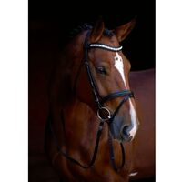 Kerbl Snaffle Bridle Shine-On Leather Cob 323556