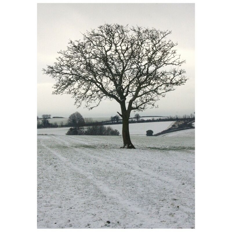 Image of Cope Farm Tree Christmas Card (One Size) (Off White/Cream/Grey Print) - Kevin Milner