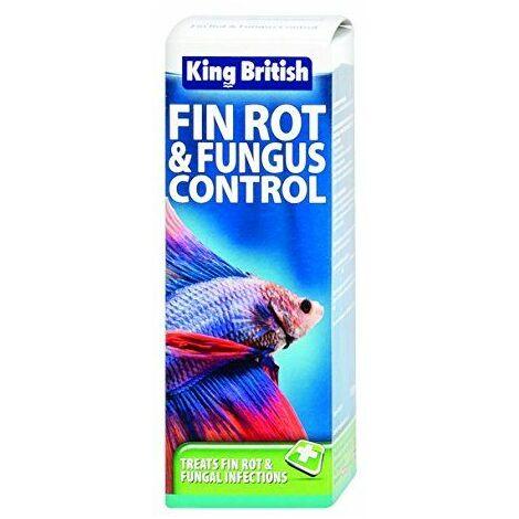 King British Produit contrôle de moisissures pour bassins à poissons