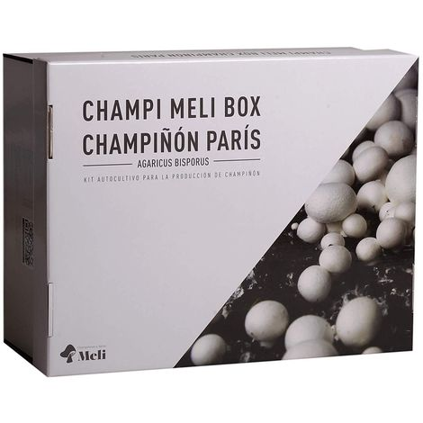 Kit autocultivo setas de champiñón París