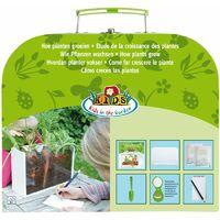 Kit Completo Per Studio Crescita Piante