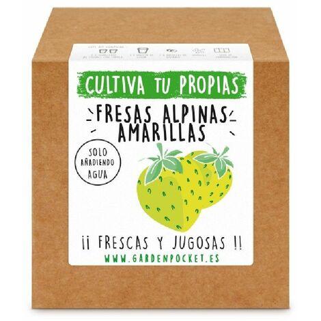 Kit cultivo caja fresas alpinas amarillas