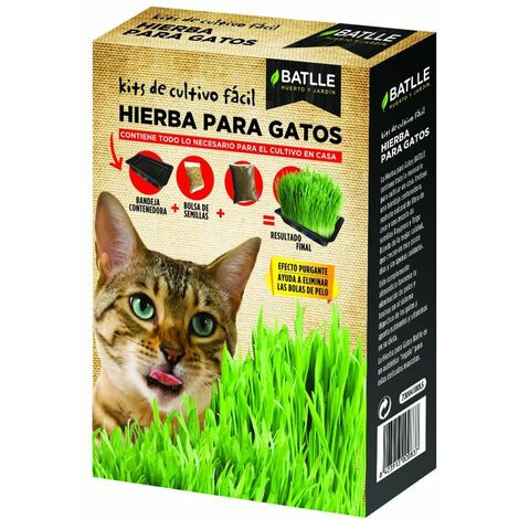 Kit Cultivo Mix Hierba Para Gatos Batlle
