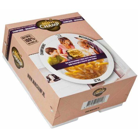 Kit culture pleurotes jaunes Minichamp 7.5 litres