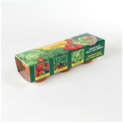 Kit de 3 pots en terre cuite pour semis salades et tomates - Astuceo