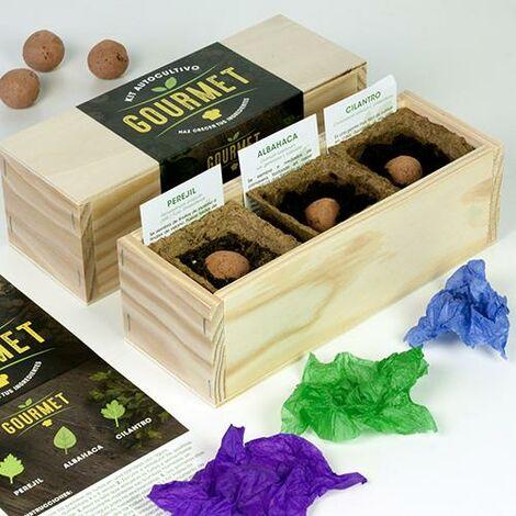 Kit de autocultivo culinario bombas de semillas Gourmet
