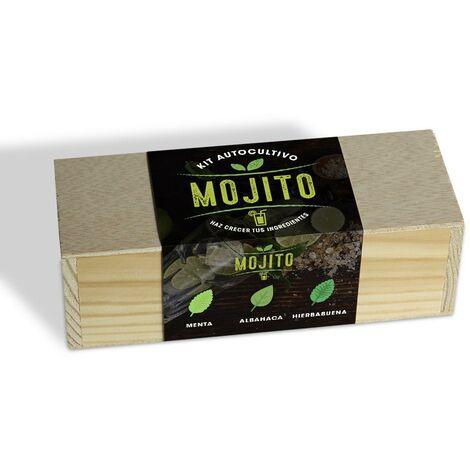 Kit de autocultivo culinario bombas de semillas Mojito