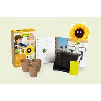 Kit De Cultivo Infantil Mini Girasol Sembra