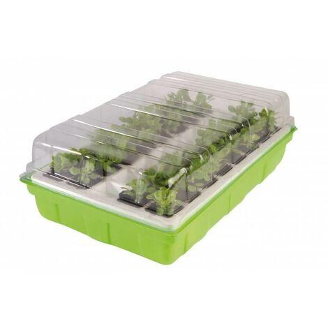 Kit de germination pour semis Vert 12 cm