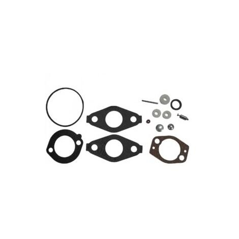Kit joint carburateur Briggs Stratton