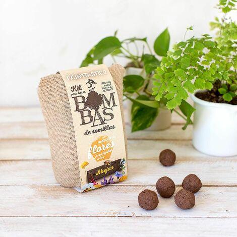 Kit para hacer bombas de semillas Nendo Dango Abejas