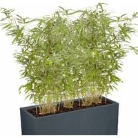 Jardiniere brise vue à prix mini - La black friday week