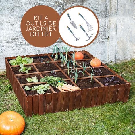 Kit potager butternut + 4 outils de jardinage