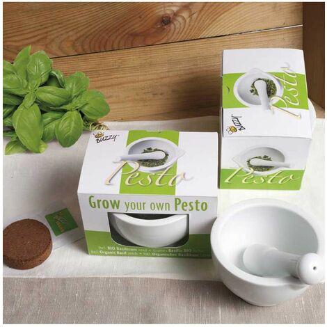 Kit pour pesto - Astuceo