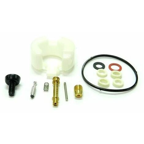 Kit réparation carburateur tondeuse moteur MTD