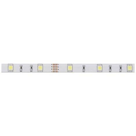 Kit Ruban LED Blanc Froid 12V 10mm x 5m adhésif 150 LEDS IP61