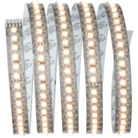 Kit ruban MaxLED 1000 1,5m blanc lumière du jour 17W 230/24V 36VA argent 6500K