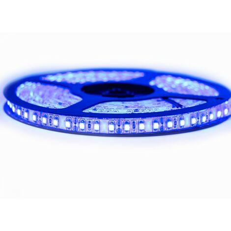 Kit Ruban Professionnel 3528 - 120 leds/m - 5 mètres bleu anti-éclaboussure (IP65)