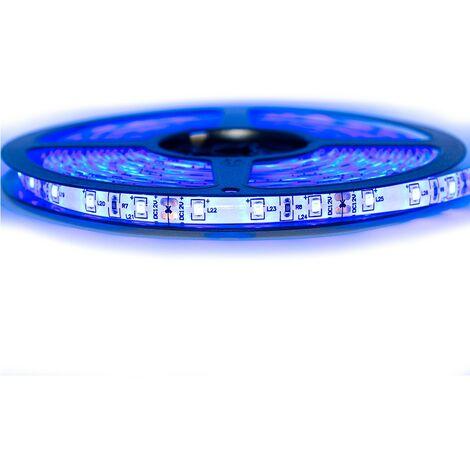 Kit Ruban Professionnel 3528 - 60 leds/m - 1m, 2.5m, 5 ou 10 mètres au choix- Bleu anti-éclaboussure (IP65)