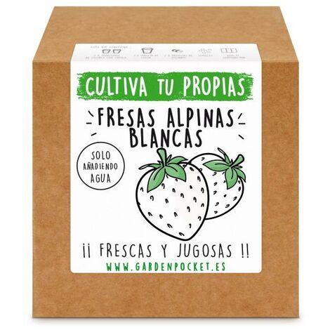 Kit siembra Fresas alpinas blancas Garden Pocket